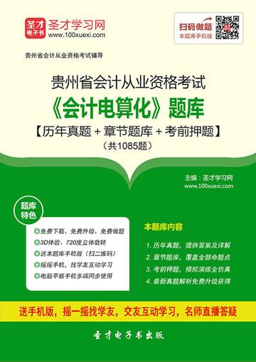 贵州省会计从业资格考试《会计电算化》题库【历年真题+章节题库+考前押题】